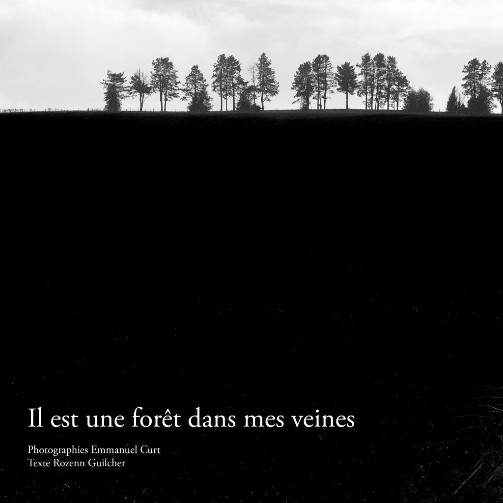 Affiche exposition Il est une forêt dans mes veines Rozenn Guilcher