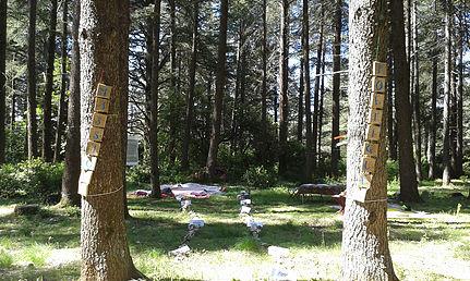 Massages poétiques en forêt