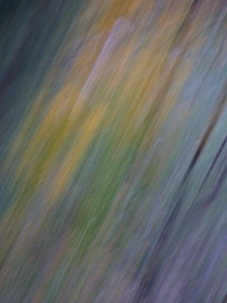 Photo texture Rozenn Guilcher