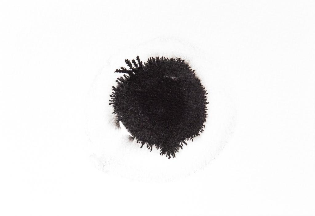 Pomme encre noire Rozenn Guilcher