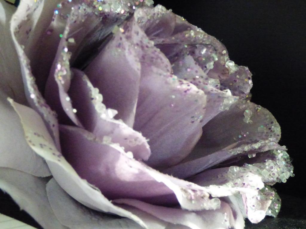 Photo fleur mauve Rozenn Guilcher